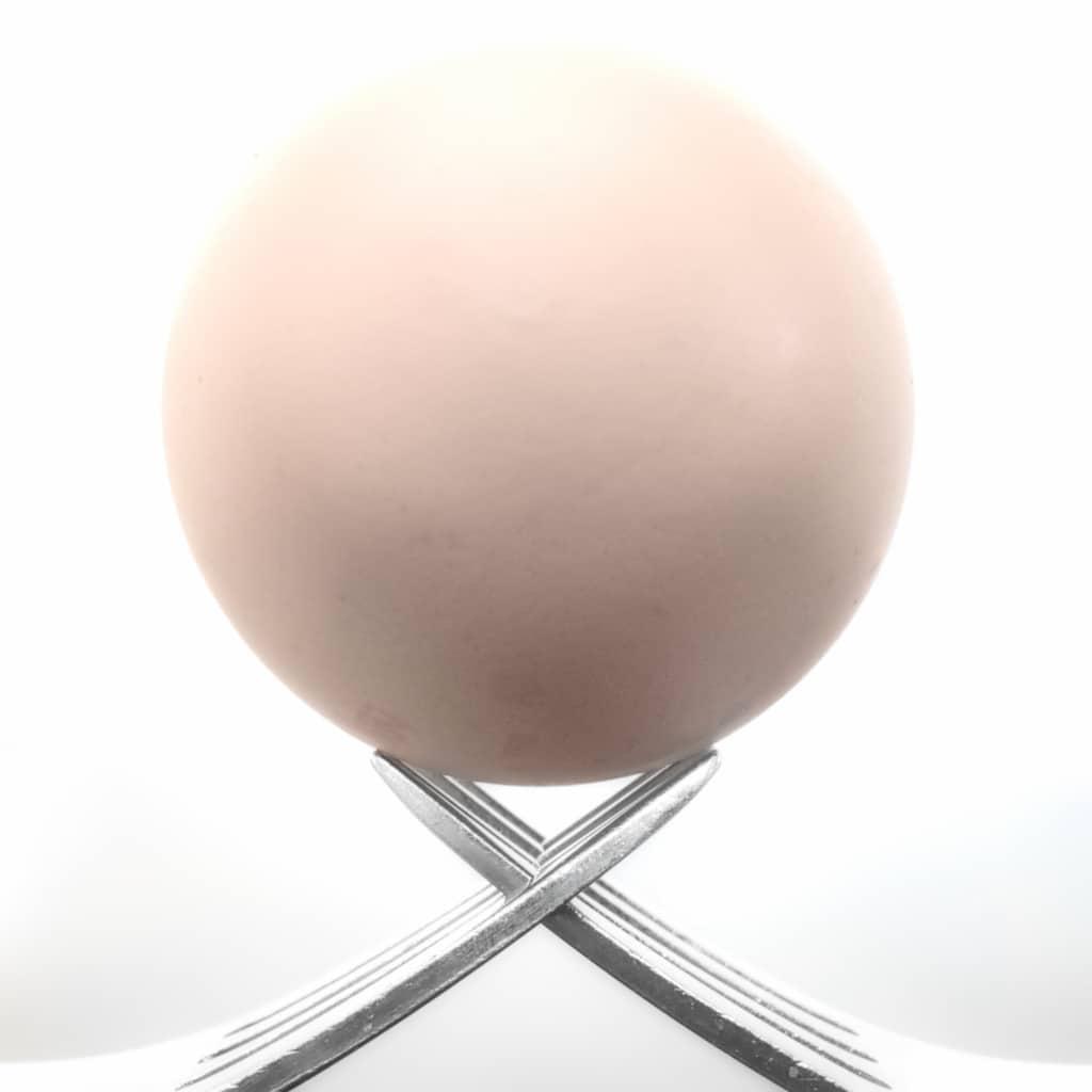 Egg on Forks ©HelenBushe